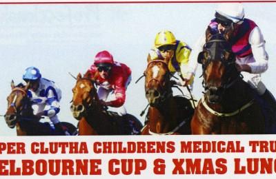 2012 Melbourne Cup adj